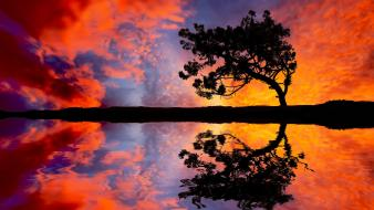 Clouds trees silhouette reflections wallpaper