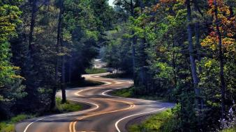 Nature forest roads wallpaper