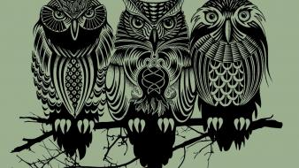 Owls artwork simple background wallpaper
