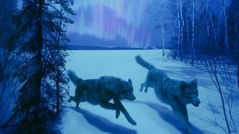 Trees animals running snow landscapes wolves wallpaper