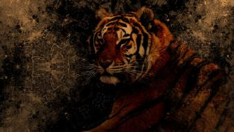 Abstract black animals tigers grunge brown background wallpaper
