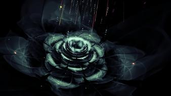 Abstract flowers fractals fractalius black background fractal wallpaper