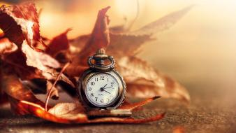 Autumn (season) leaves clocks everything sunlight ink wallpaper