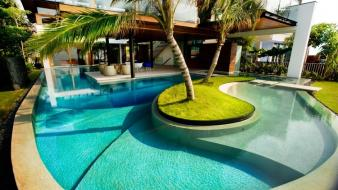 Fish palm trees house swimming pools renders wallpaper