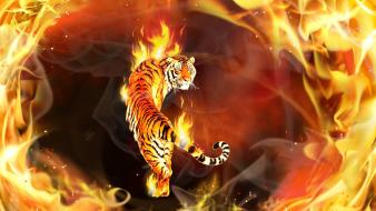 Flames animals fire tigers artwork wallpaper