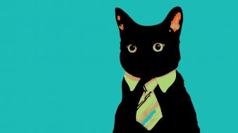 Minimalistic cats animals suit tie meme wallpaper