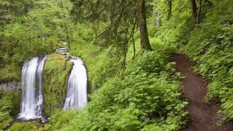 Nature falls oregon creek columbia wallpaper