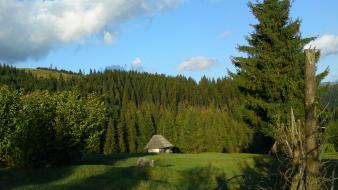 Nature forest romania transylvania cottage wallpaper