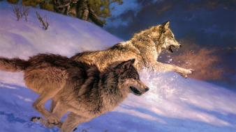 Paintings snow animals jumping running wolves wallpaper