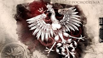 Polish poland victory proud orzeł ball wallpaper