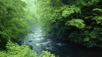 Tennessee rivers national park great smoky mountains wallpaper