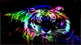 Tigers fractals fractalius glowing black background fractal wallpaper