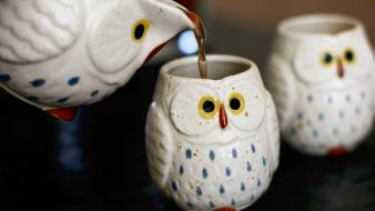 Cups owls drinks wallpaper