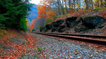 Forest stones railroad tracks contrast railway wallpaper