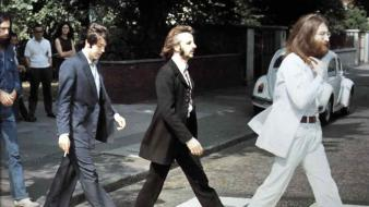 Abbey road the beatles musicians wallpaper
