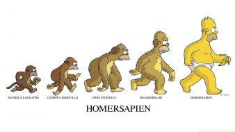 Humor homer simpson evolution the simpsons bananas monkeys Wallpaper