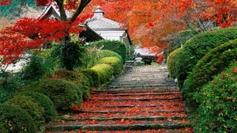 Japan nature red garden kyoto staircase Wallpaper
