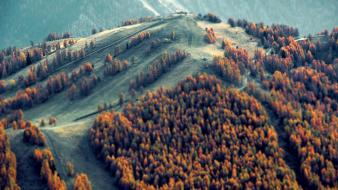 Mountains trees forest tilt-shift wallpaper