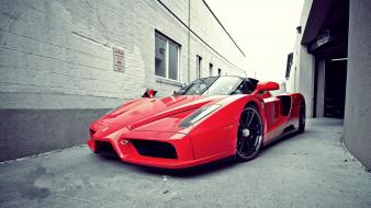 Red cars ferrari outdoors vehicles enzo wallpaper