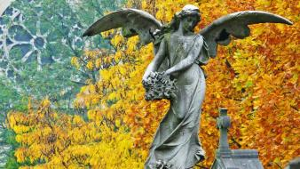 Statues angel wallpaper