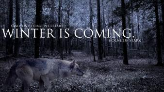Strider game of thrones winter is coming wolves Wallpaper