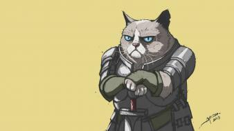 Cats knights sir grumpy cat tard wallpaper
