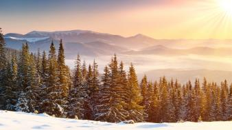 Landscapes snow forests wallpaper