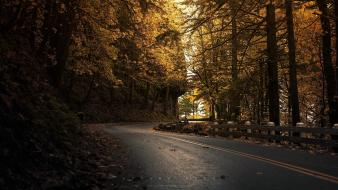 Landscapes trees fences roads greg martin cliff wallpaper
