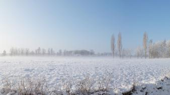 Landscapes winter snow holland the netherlands enschede wallpaper