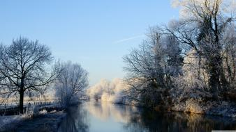 Nature winter trees forests rivers wallpaper