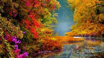 Path calm waterfalls bushes foliage falling autumn wallpaper