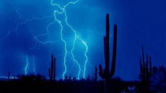 Storm cactus lightning lighting thunder up skies sky wallpaper