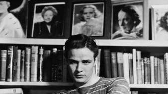 Actors marlon brando movie legends wallpaper