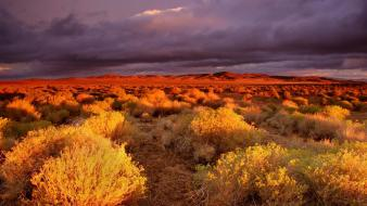 Clouds landscapes nature desert wallpaper
