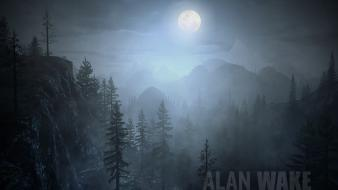 Night jungle alan wake wallpaper