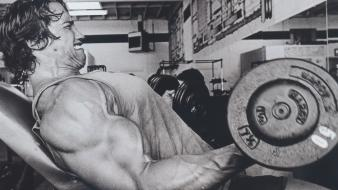 Sports gym arnold schwarzenegger actors bodybuilding wallpaper