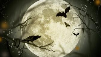 Trees night halloween moon bats raven wallpaper