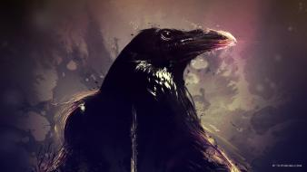 Artwork birds crow wallpaper