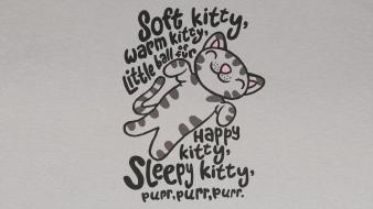 Cats poem the big bang theory (tv) wallpaper