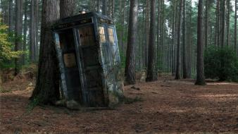 Forest tardis doctor who wallpaper