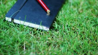 Grass pens notebook herbs wallpaper