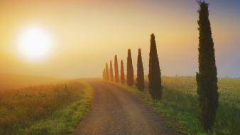 Mist italy morning tuscany wallpaper