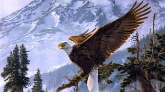 Mountains birds eagles wallpaper