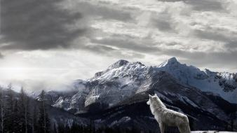 Mountains landscapes trees forest wolves wallpaper