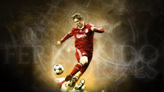 Soccer liverpool fc fernando torres football player wallpaper