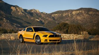 Yellow black stripe muscle car boss 302 wallpaper