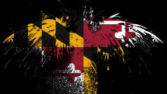 Eagles hawk flags usa maryland state wallpaper
