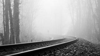 Trees forest mist grayscale railroad tracks wallpaper