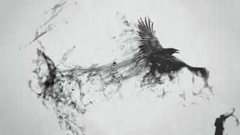 Wings birds smoke grayscale artwork simple background messenger wallpaper