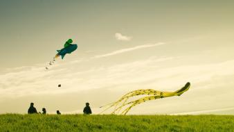 Grass kite new zealand sky wallpaper